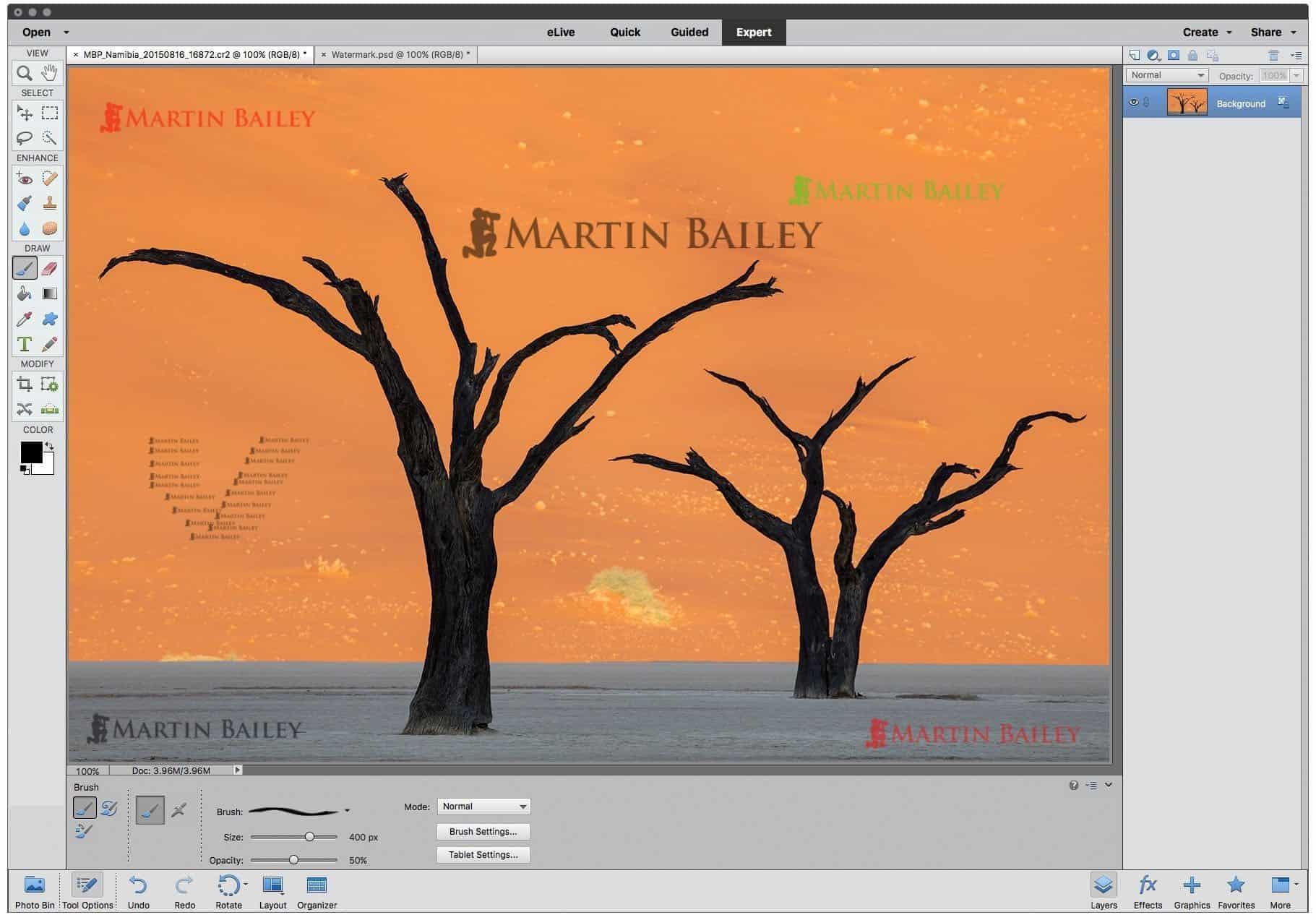 Exporting for web in photoshop elements podcast 524 martin photoshop elements applying watermark with brush buycottarizona Choice Image