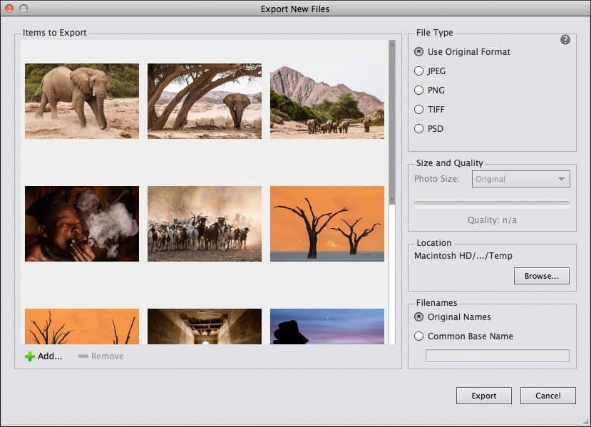 how to export multiple photoshop files into one pdf