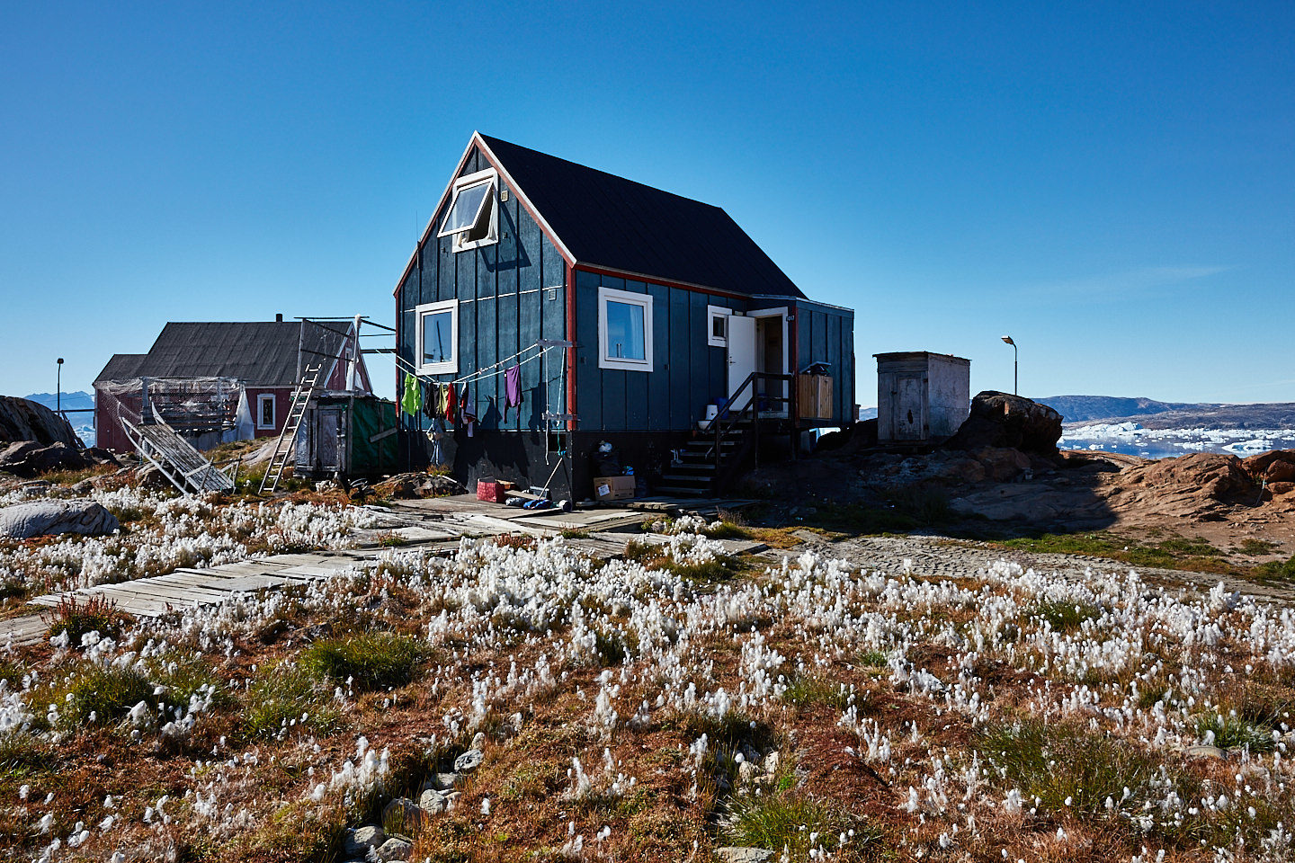 House with Cotton Grass