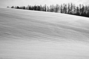 Plough Lines Under Snow