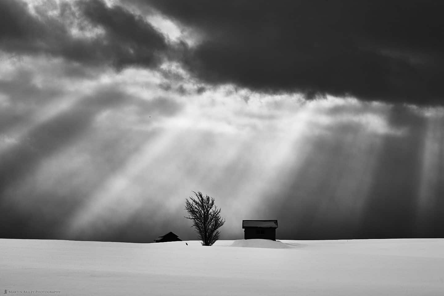 Huts and Tree in Crepuscular Rays