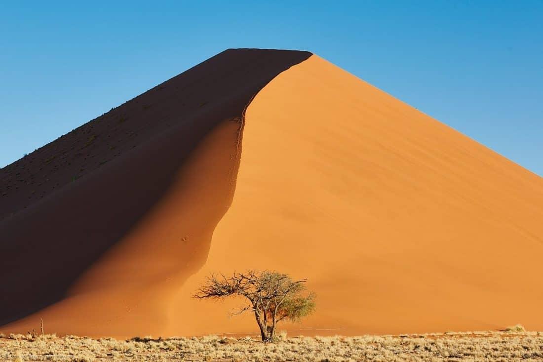 Namibian Dune (from 280 ft)