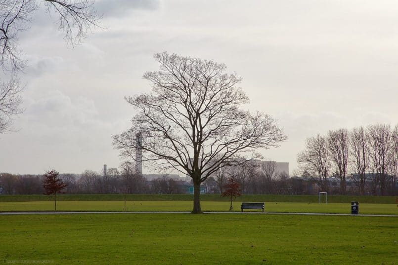 Tree and Power Station (105mm from 100m)