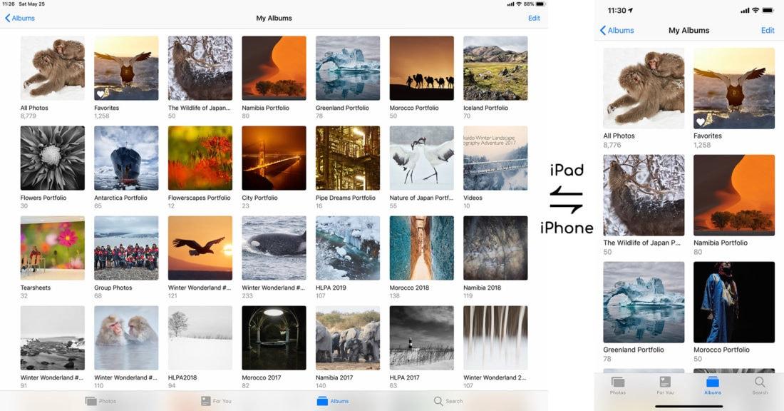 Portfolios on iOS Devices