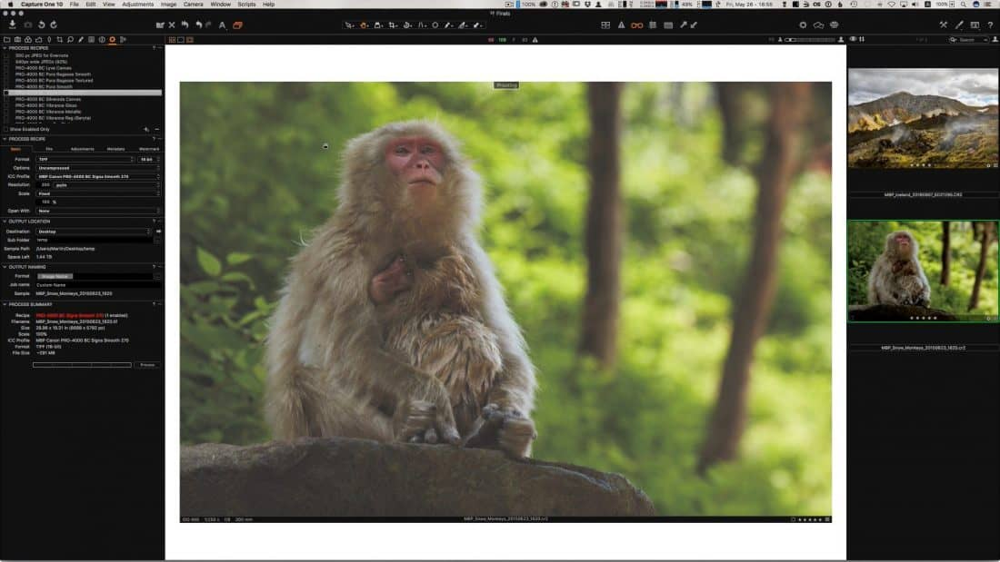 Soft-Proofing in Capture One Pro