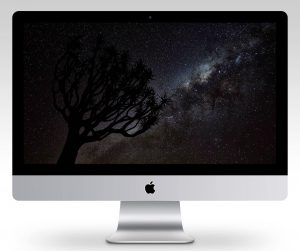 Quiver Tree and Milky Way Wallpaper Mockup