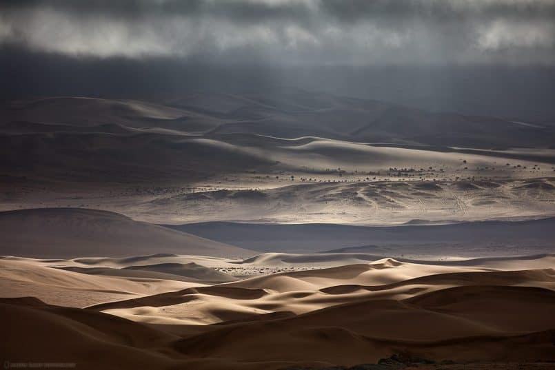 Desert Sunbeams