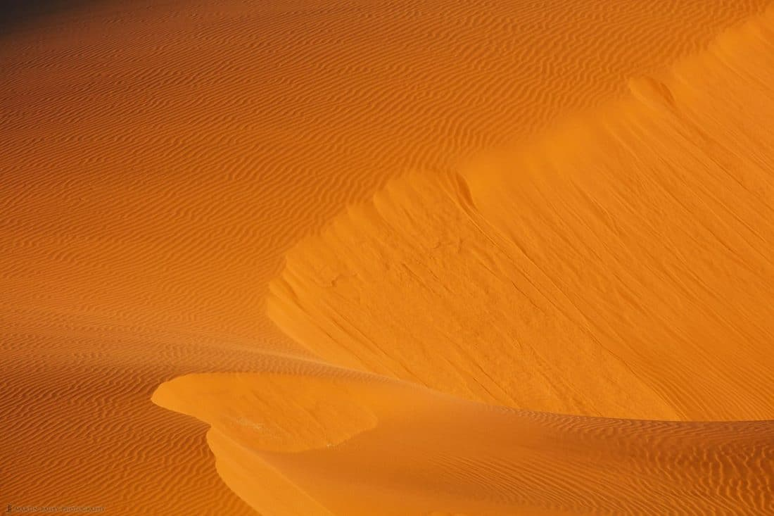 Intimate Dune #35