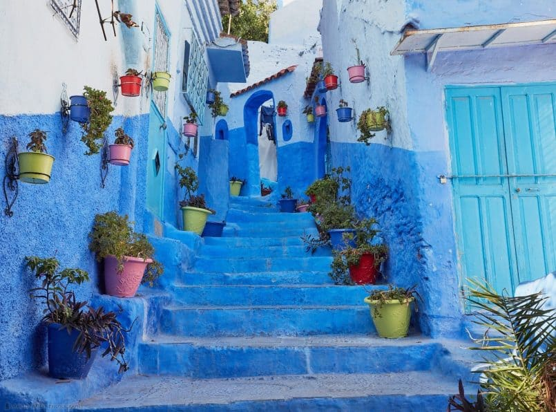 Colorful Plant Pots at Chefchaouen
