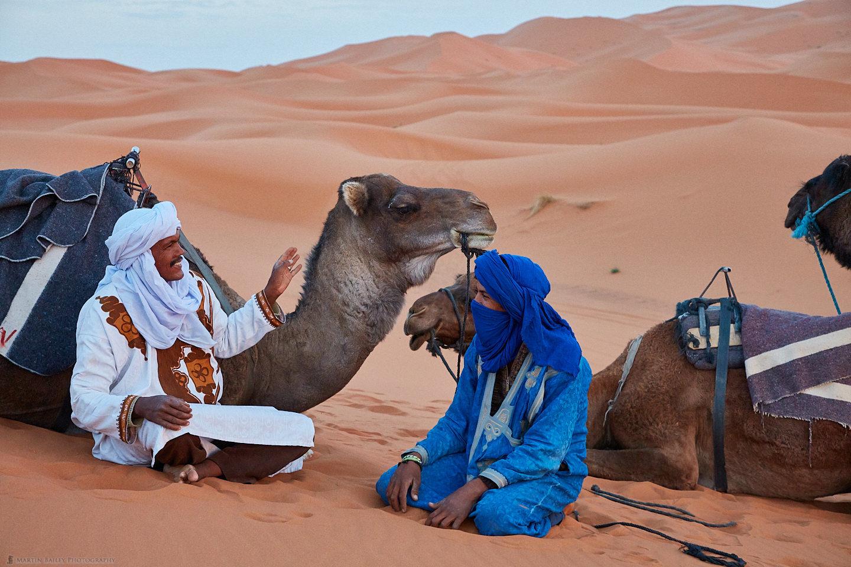 Camel Handler's Conversation