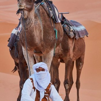 Camel Handler with Camels