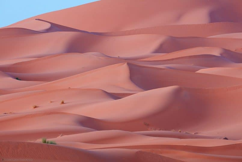 Sahara Dunes at Dawn