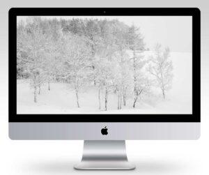 Hokkaido Winter Wonderland Wallpaper Mockup