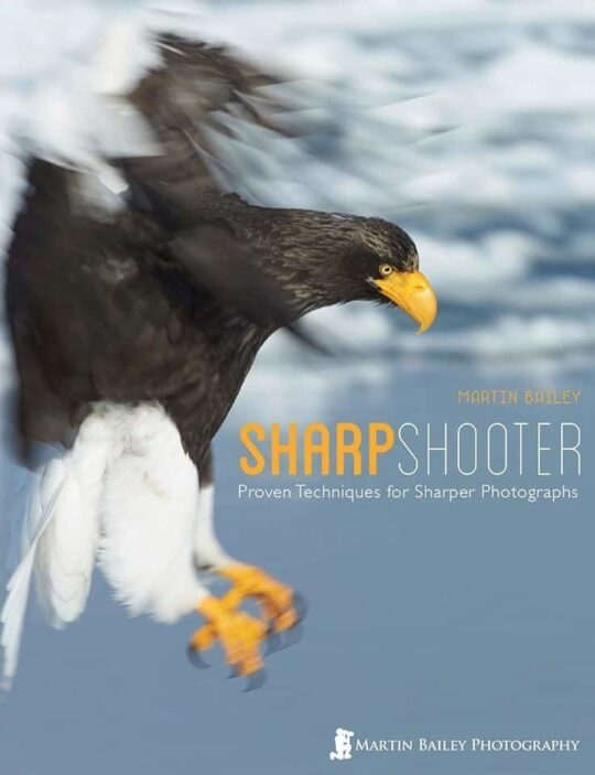 Sharp Shooter Cover