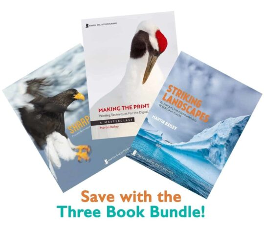 Three Book Bundle!