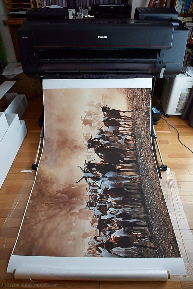 44x16-inch Print in front of Printer