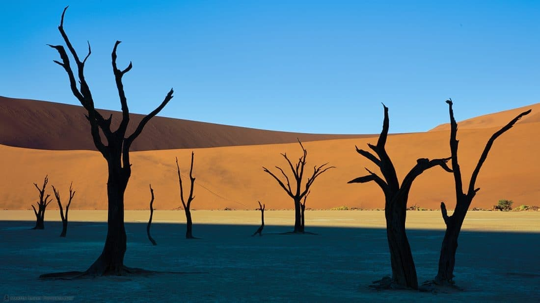 Deadvlei Bands of Color
