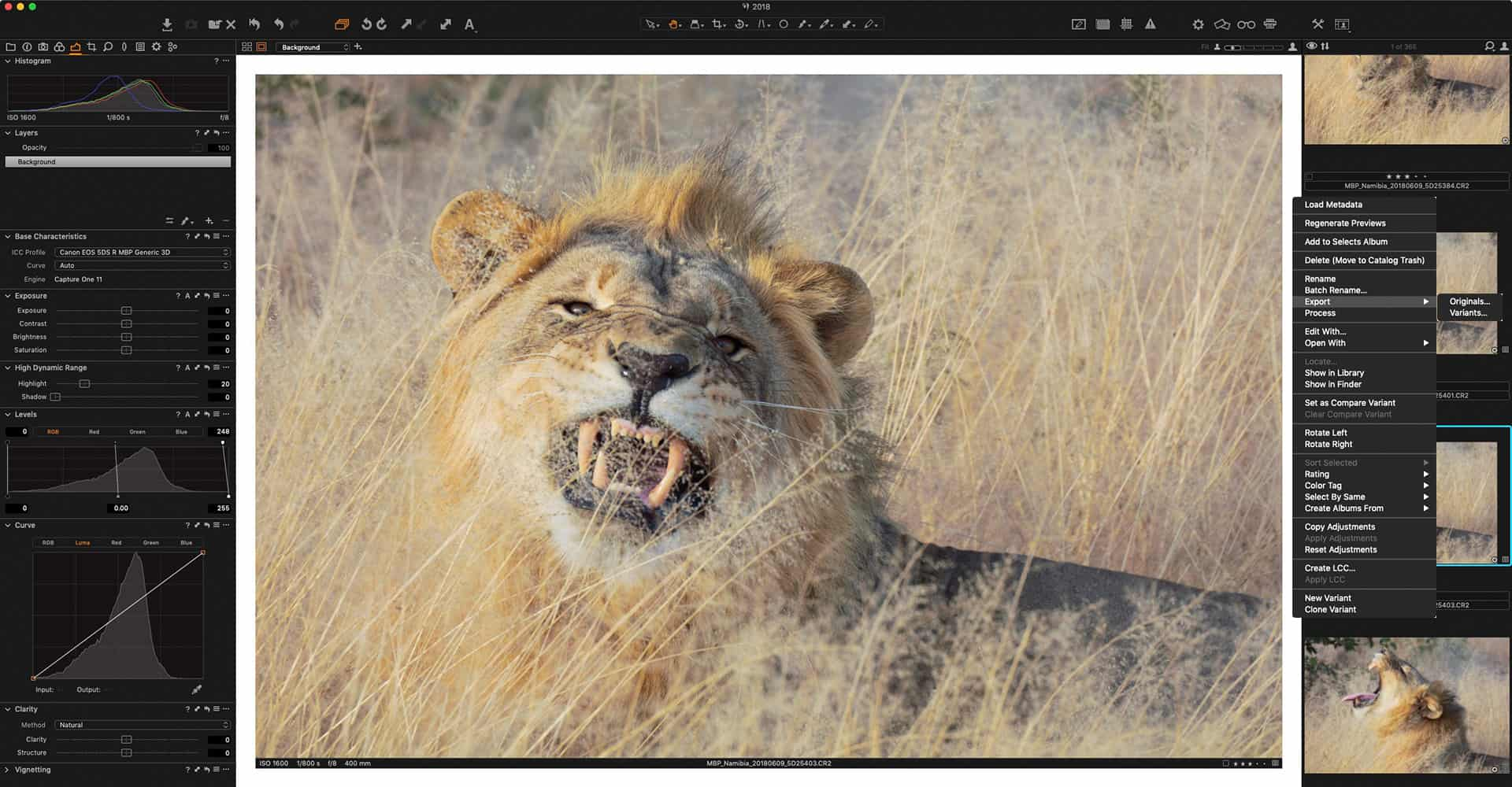 Capture One Pro Export Originals