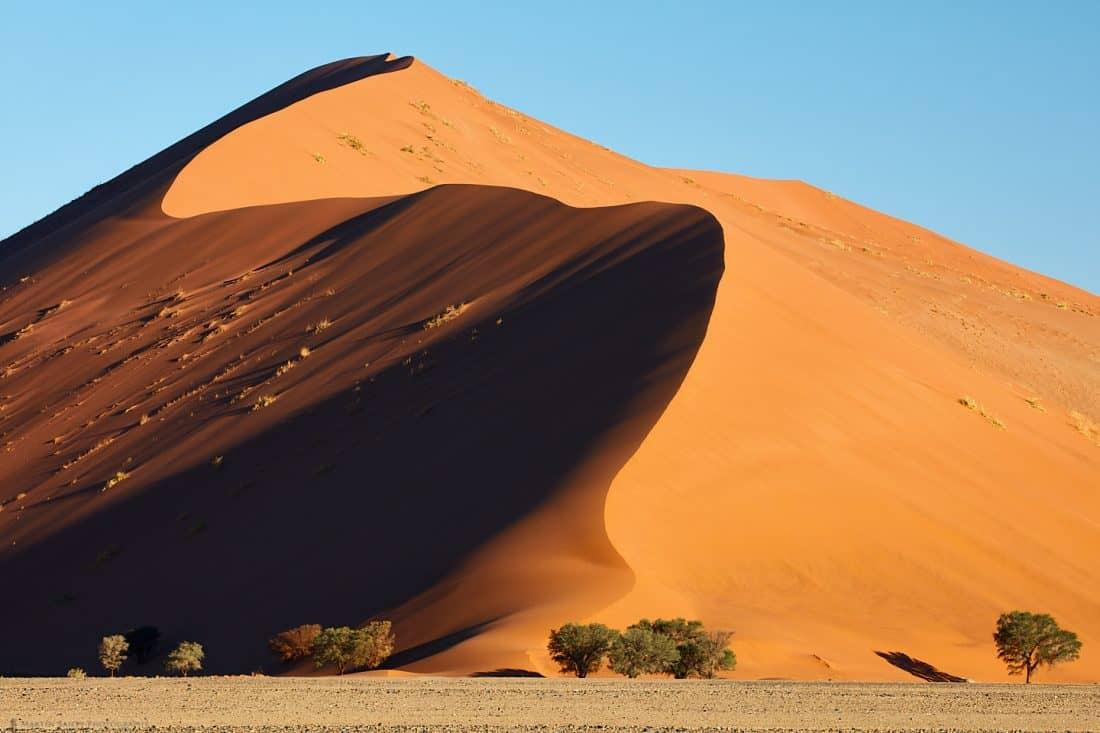 Dune #35