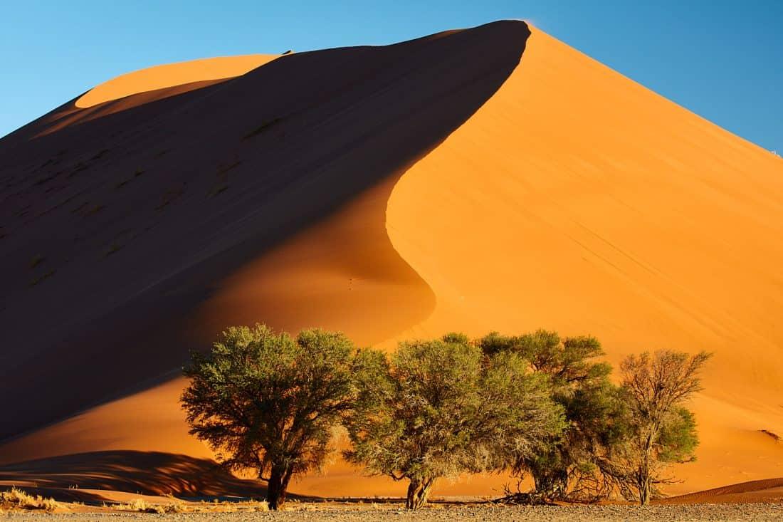 Dune #35 Closer