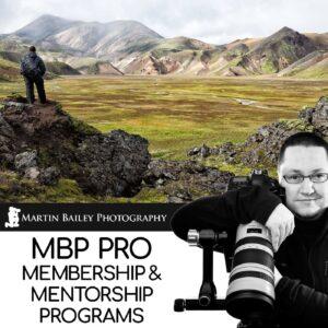 MBP Pro Membership & Mentorship Programs