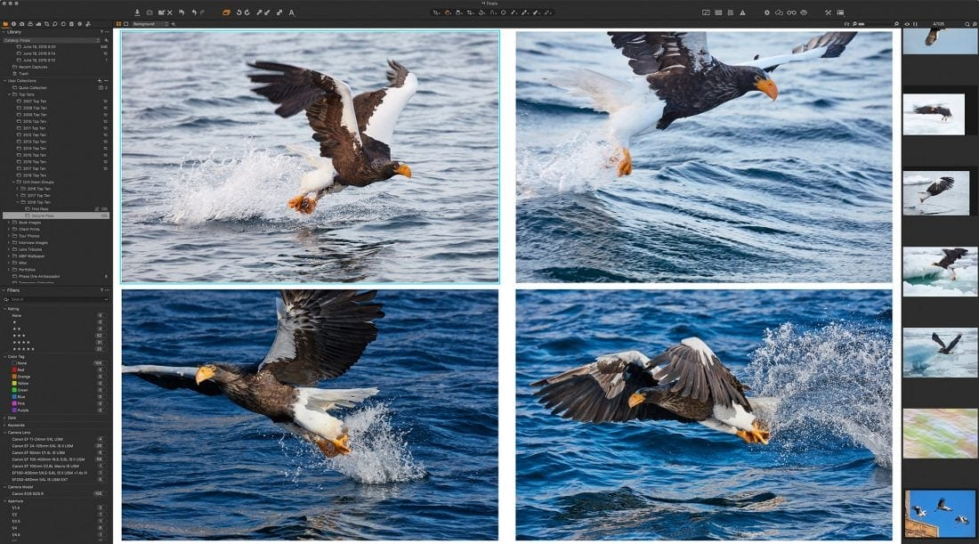 Four Eagles in Multi View