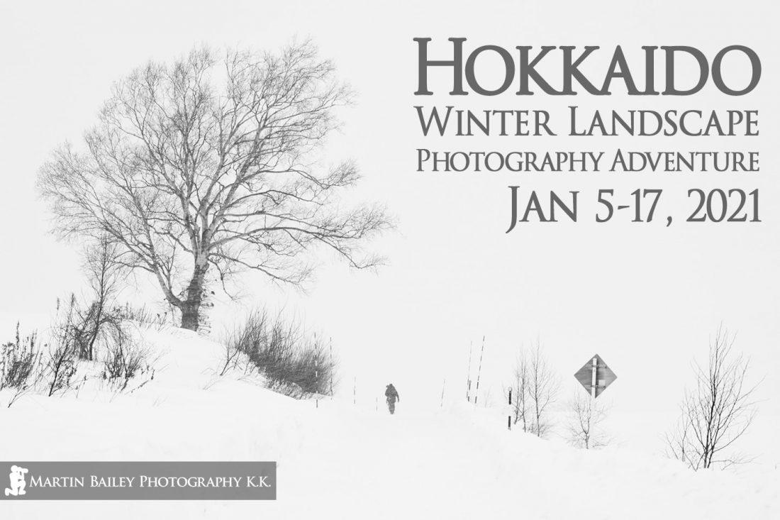 Hokkaido Winter Landscape Photography Adventure