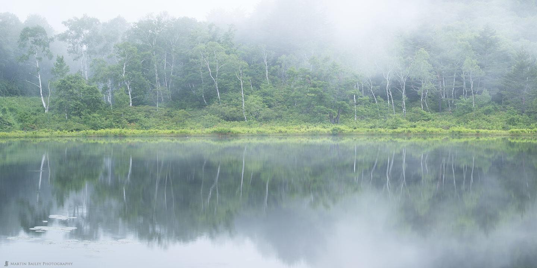 Ichinuma in the Mist
