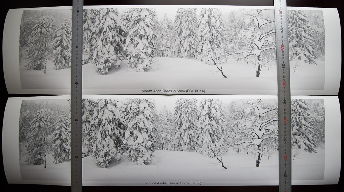 36 x 10 Inch Prints from EOS 5Ds R and EOS R