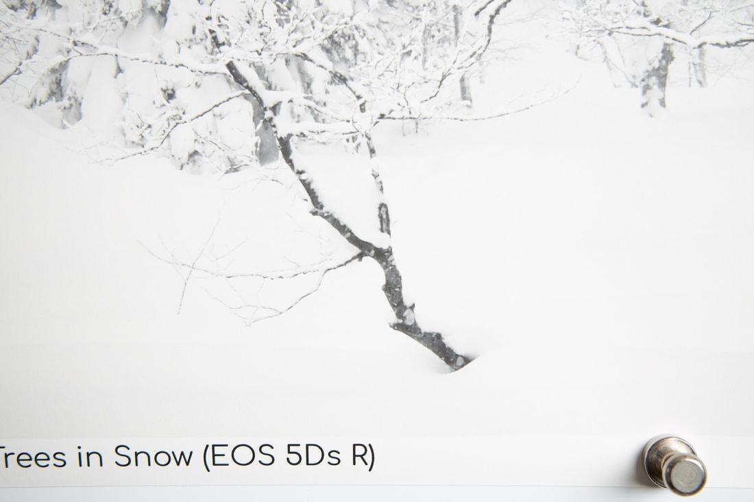 5Ds R 55.8-Inch Print Resolution