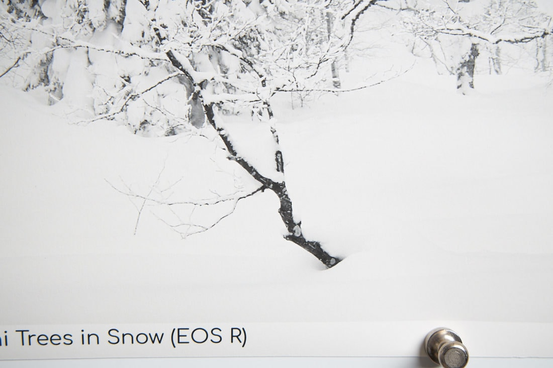 EOS R 55.8-Inch Print Resolution