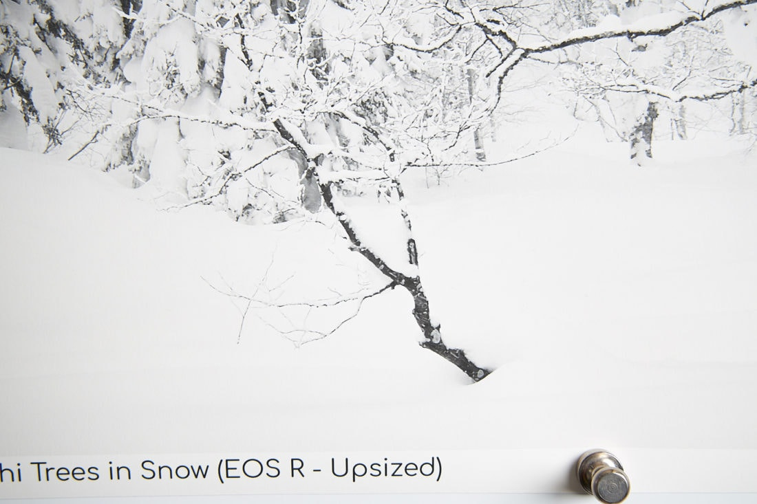 EOS R 55.8-Inch Print Upsized to 300 ppi