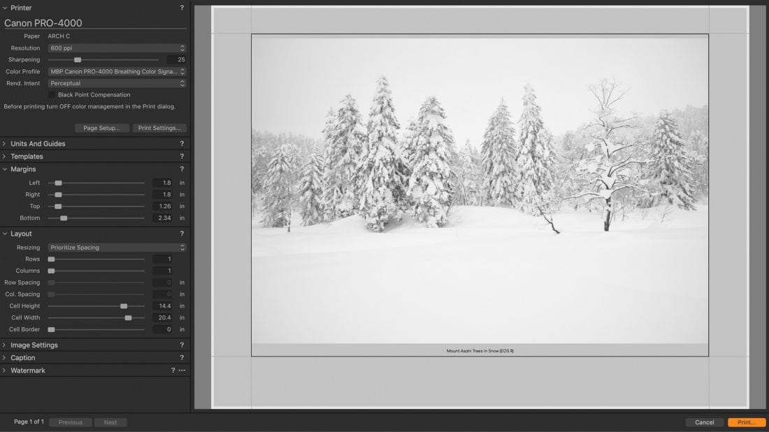 Printing EOS R Image from Capture One Pro