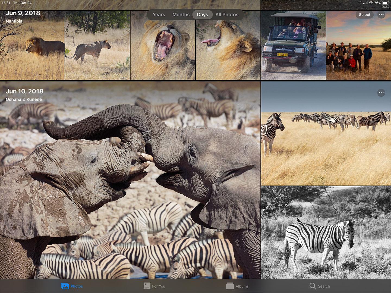 Apple Photos on iPad0S 13