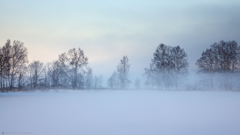 Dawn Mist in Biei
