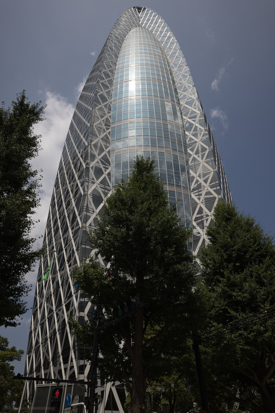 The Cocoon Building in Shinjuku (DNG)