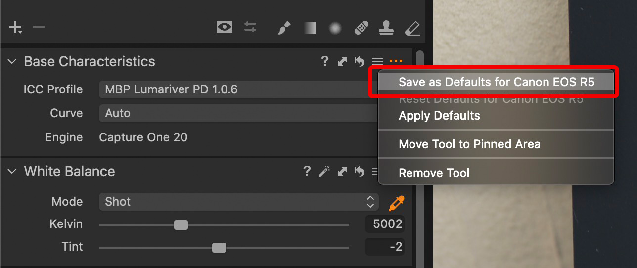 Save as Defaults for Camera