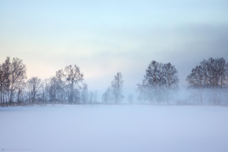 The Morning Mist in Biei