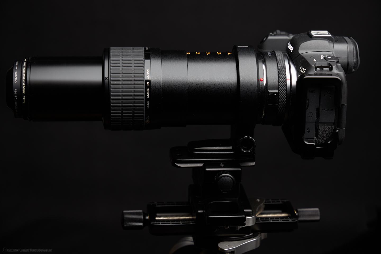 The MP-E65mm ƒ/2.8 1-5X Macro lens with Canon EOS R5
