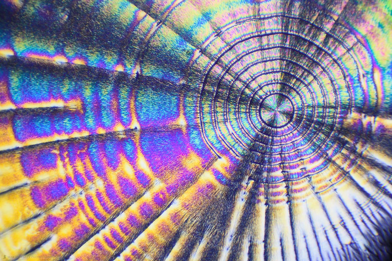 Too Hot to Handle (Polarized Ascorbic acid 100X 14 Frames)