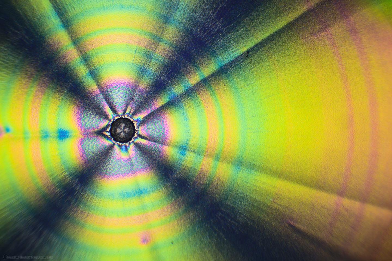 Black Hole Owl (Polarized Ascorbic acid 40X 32 Frames)