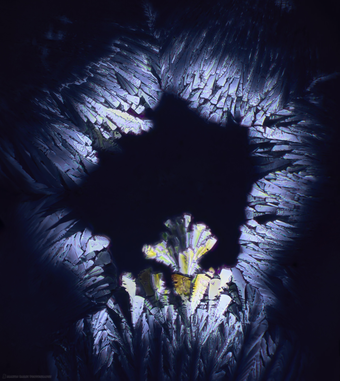 Crystal Alter (Polarized Sodium Sulfite 400X 20 frms)