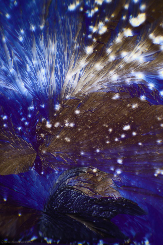 Raven Bathing (Citric Acid Crystals 40X 23 Frames)