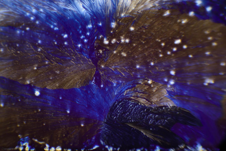 Raven Bathing (Citric Acid Crystals 40X 21 Frames)