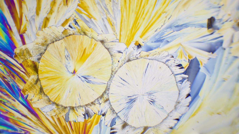 We've Got This! (Citric Acid Crystals 2 Photo Stitch 100X 27 Frames)