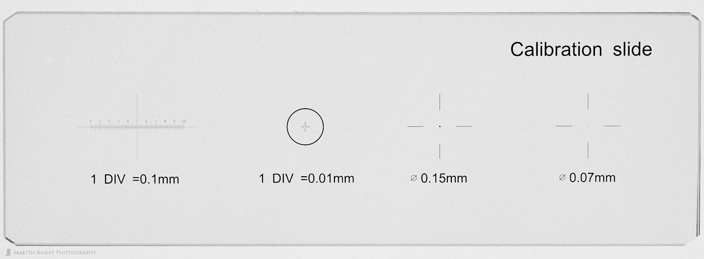 Microscope Calibration Slide